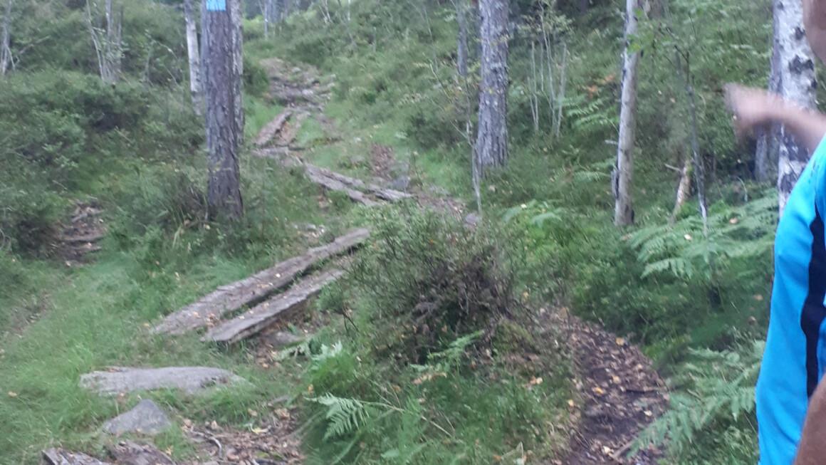 Østmarka; På merket og umerket sti rundt Langvann…