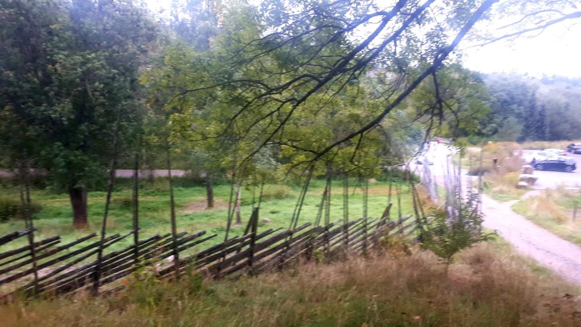 Løpetur litt rundt omkring – Lambertseterskogen – Ljanselva….