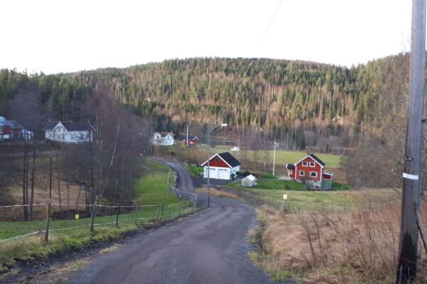 Østmarka; Langtur på skogsveier og i lysløypa…..