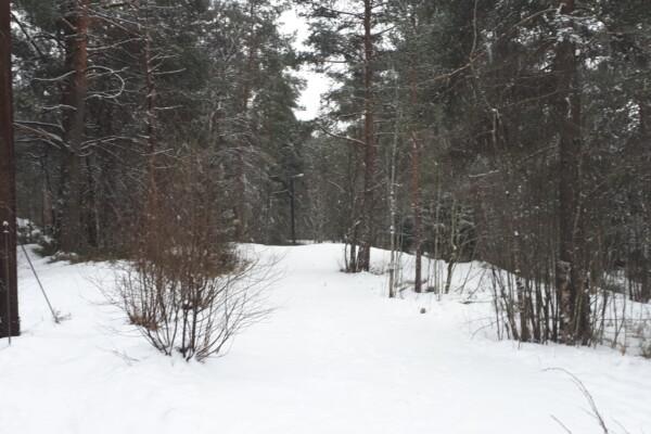 Nøklevannskogen – Rundtjern – Varmesentralen – Godliaskogen…