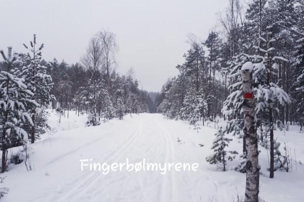Skitur i Østmarka; Pettersbråtan – Fingerbølmyrene – Deledalen – Mariholtet….