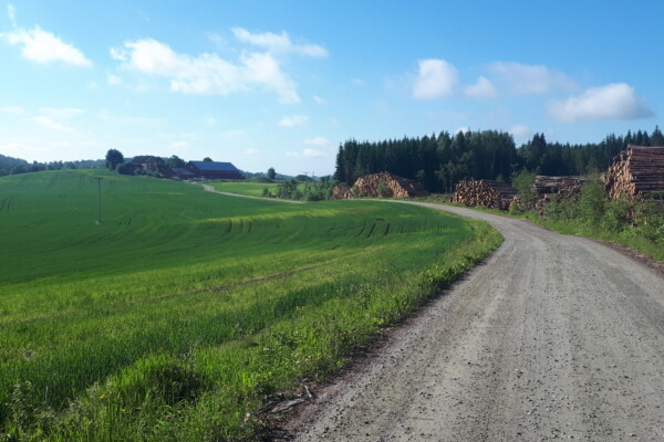 Morgentur fra- og til hytta ved Lyseren i Spydeberg…..