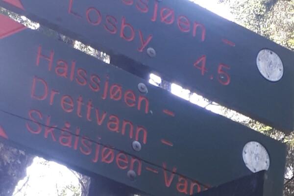 Østmarka; Sti ved lavvann – Deledalen – Nilsåsen…….
