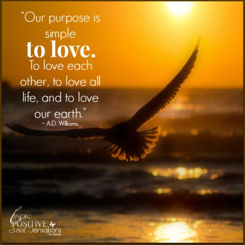 Our purpose!