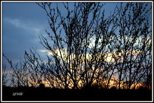 Vakre solnedganger!
