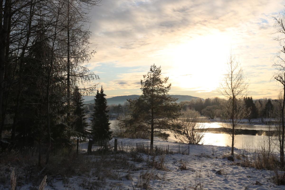 Et bilde fra jula på østlandet