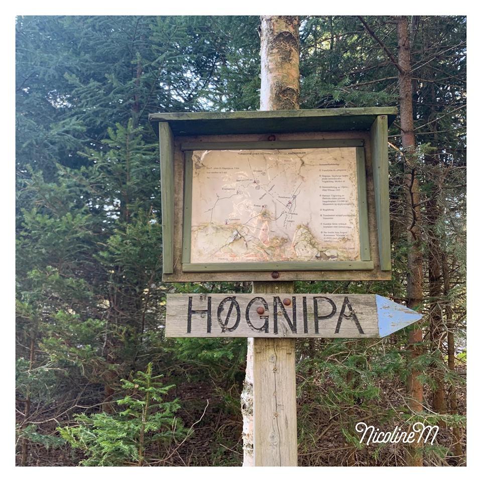 Lørdagstur til Høgnipa
