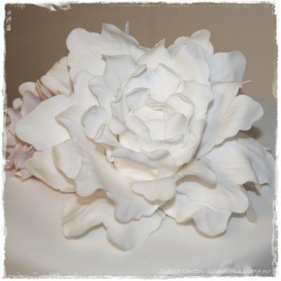 Bryllupskake i hvitt og rosa