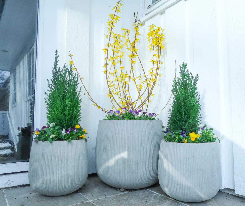 Blomsterpotter ute
