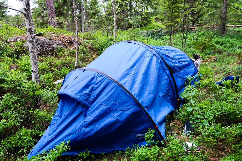 Nerverpirrende telt tur i skogen!